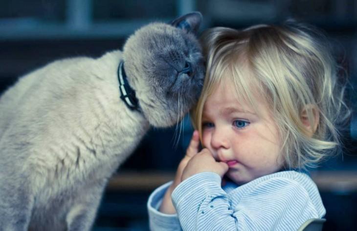 30 imágenes tiernas de niños con sus gatitos