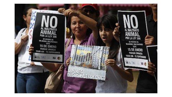 Sabías que la ley 70, en Panamá, es la que protege los derechos de los animales domésticos